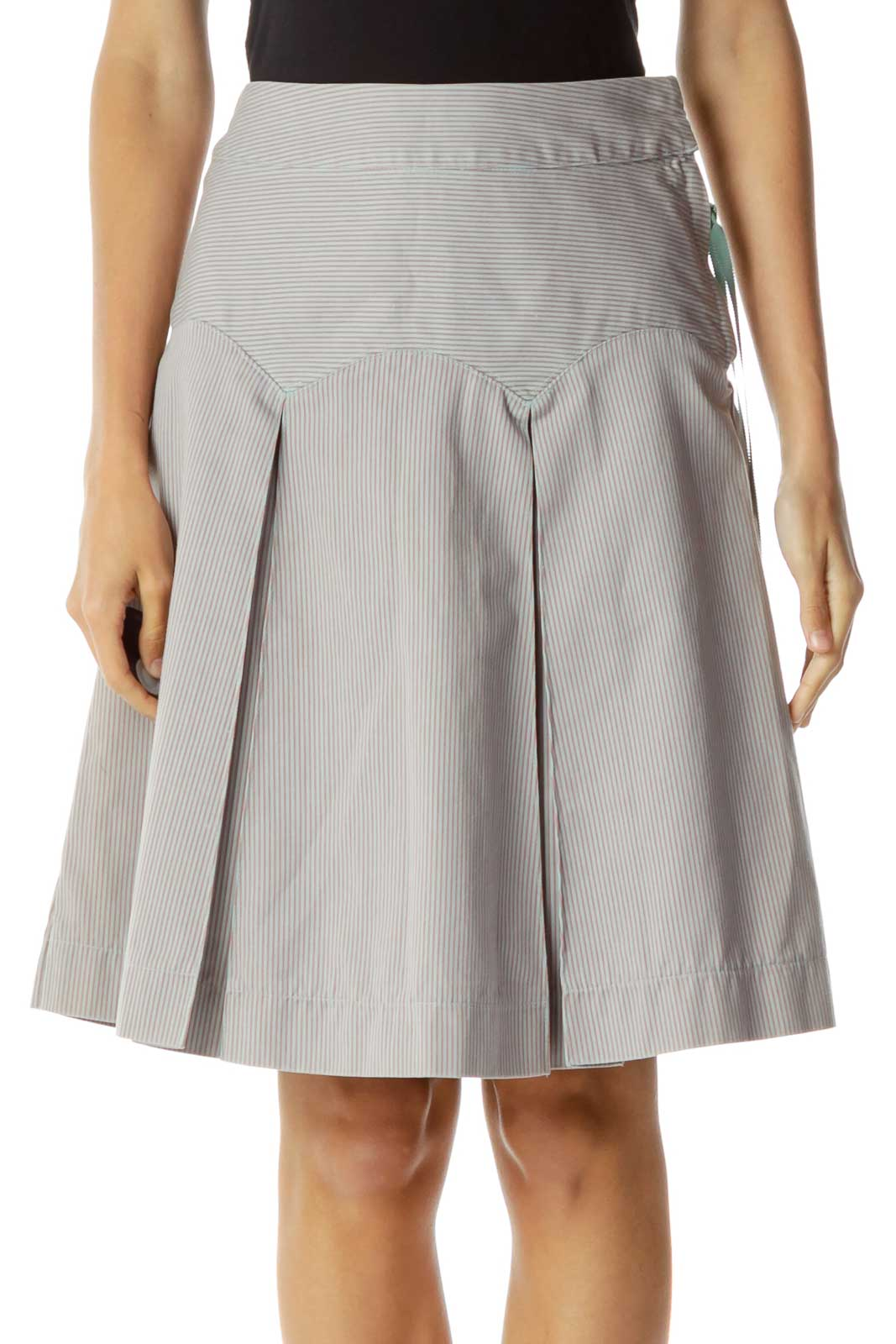 Purple Pink Pinstripe A-Line Skirt Front