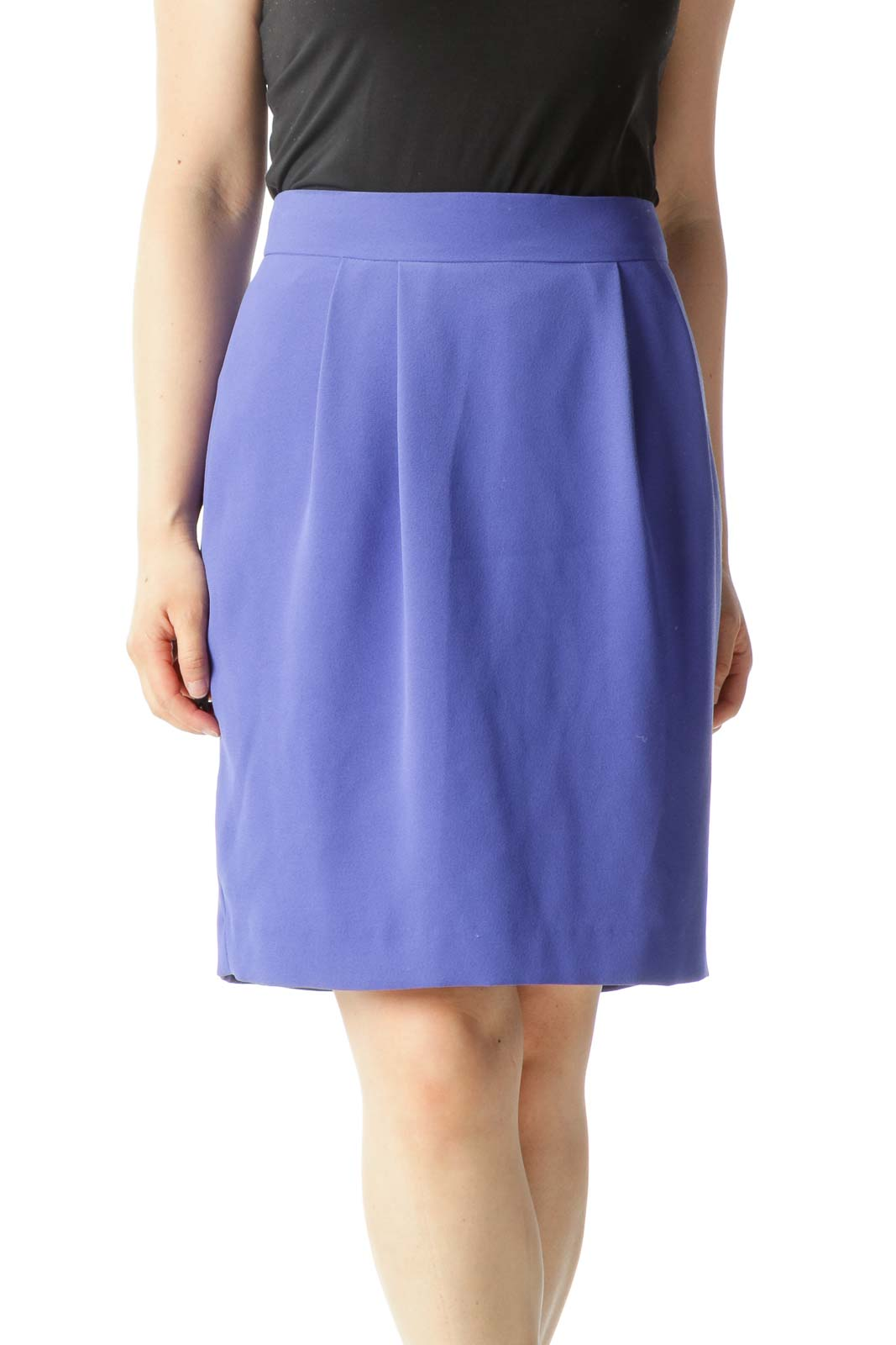 Blue Pleated Zippered A-Line Skirt Front