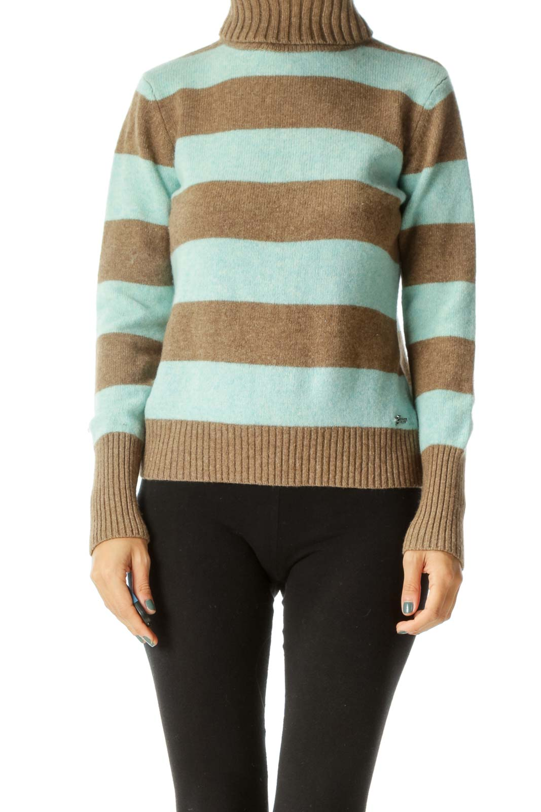Blue and Brown Striped Turtle Neck Front