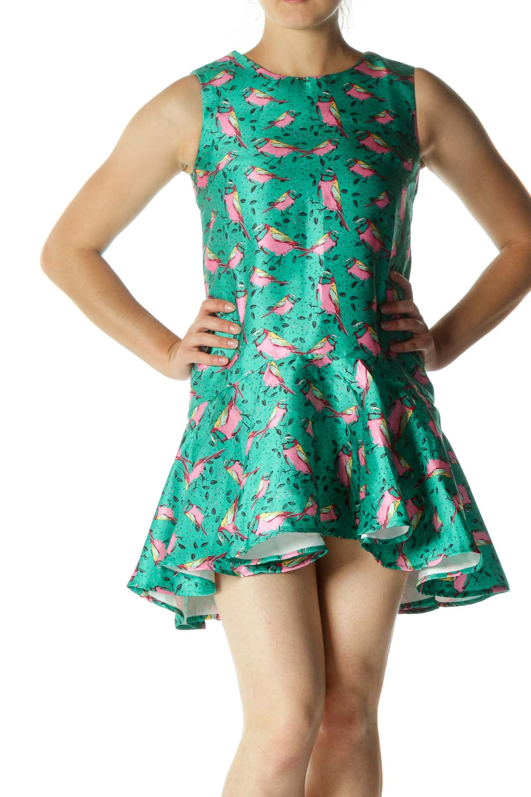 Green Yellow Pink Bird Print Flared Dress Front