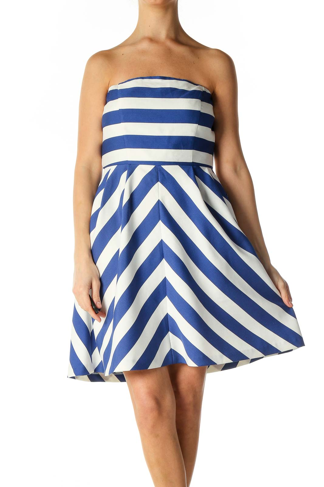 Blue Striped Day Fit & Flare Dress Front