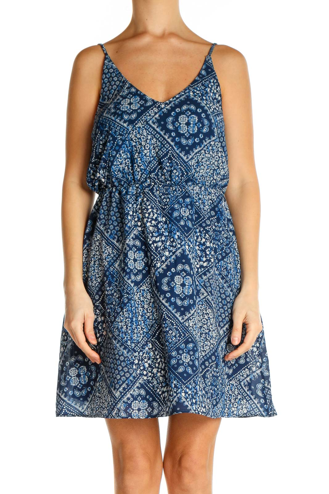 Blue Printed Holiday Fit & Flare Dress Front