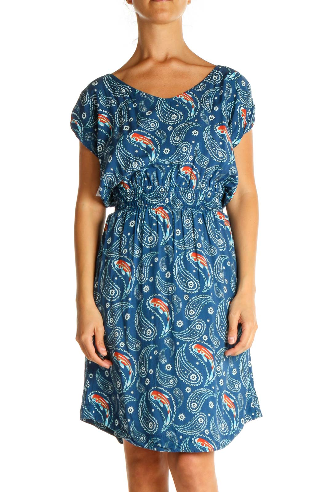 Blue Paisley Casual Fit & Flare Dress Front
