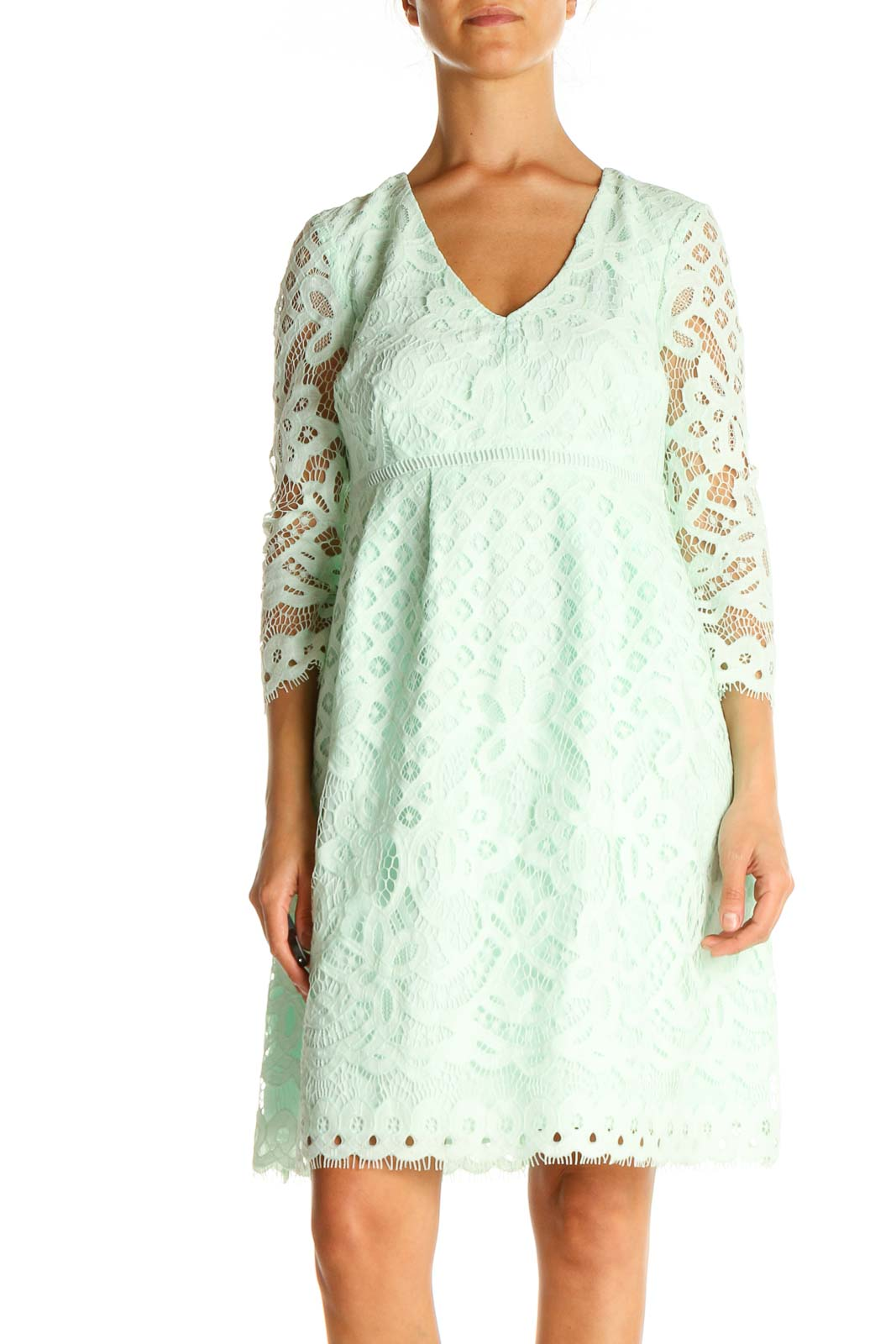 Blue Lace Day Fit & Flare Dress Front