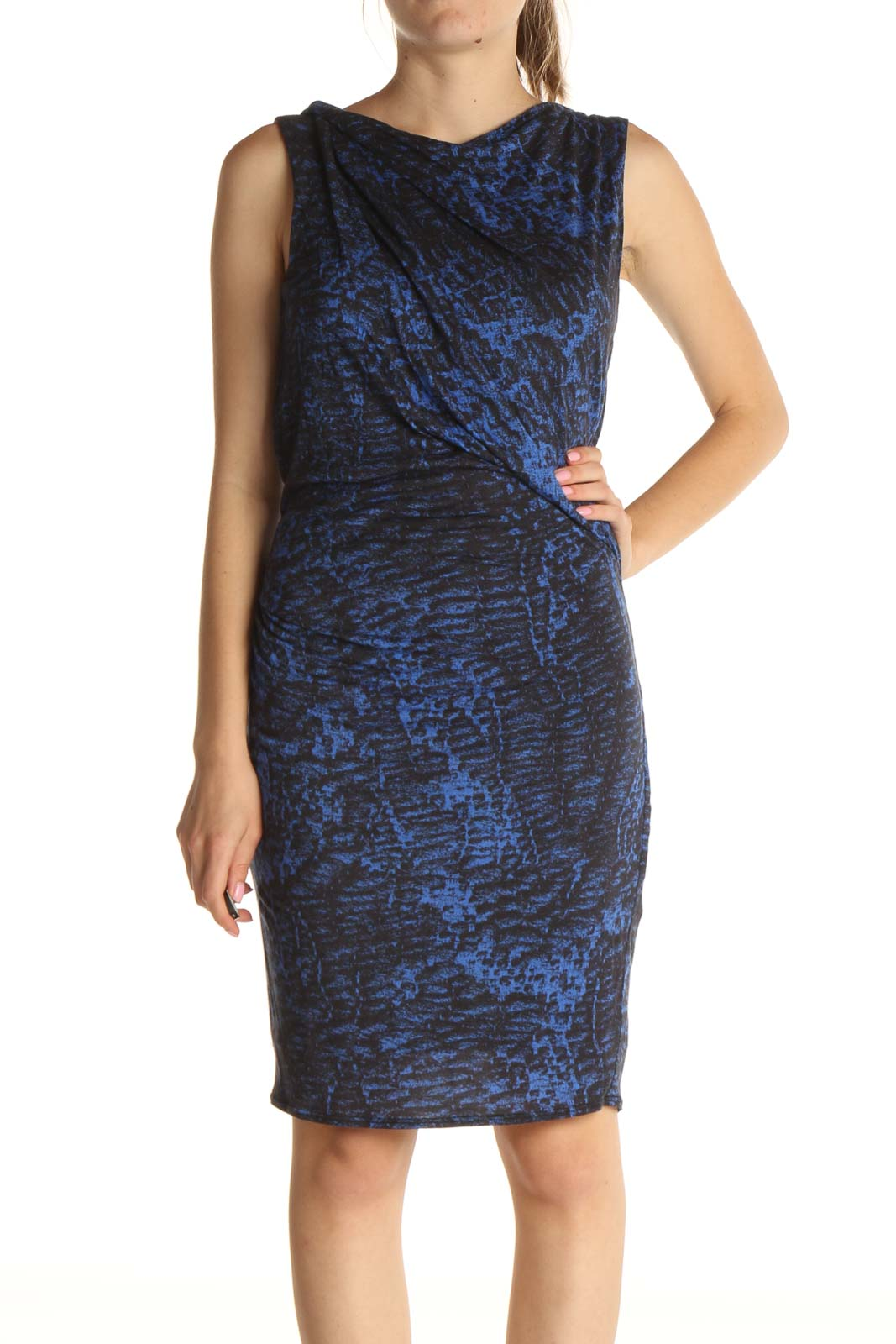Blue Animal Print Sheath Dress Front