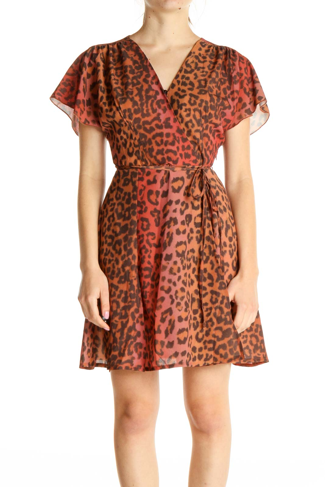 Brown Day Animal Print Fit & Flare Dress Front